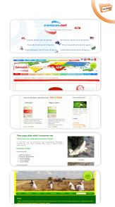 Pregledni web dizajn kataloga i usluga